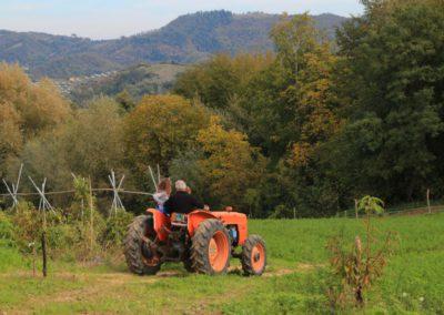 Autunno Agriturismo Santa Lucia dei Sibillini di Montefortino 23