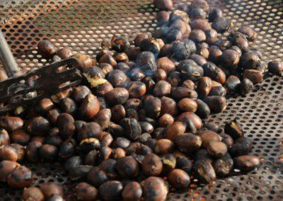 Autunno Agriturismo Santa Lucia dei Sibillini di Montefortino 35