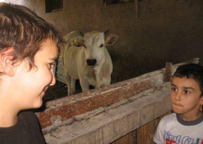 Azienda Agricola Agriturismo Santa Lucia dei Sibillini a Montefortino1-3