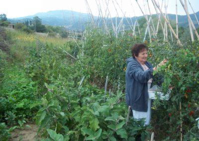 Azienda Agricola Agriturismo Santa Lucia dei Sibillini a Montefortino3