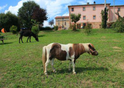 Estate Agriturismo Santa Lucia dei Sibillini Montefortino 0