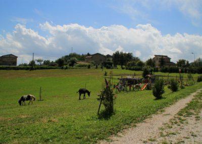 Estate Agriturismo Santa Lucia dei Sibillini Montefortino 4