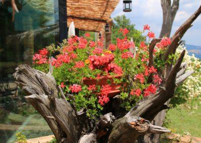 Estate Agriturismo Santa Lucia dei Sibillini Montefortino 40