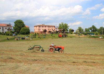 Estate Agriturismo Santa Lucia dei Sibillini Montefortino 51