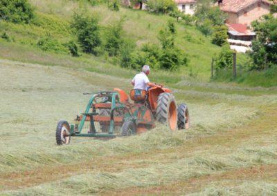Estate Agriturismo Santa Lucia dei Sibillini Montefortino 52