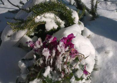 Inverno Agriturismo Santa Lucia dei Sibillini Montefortino 10